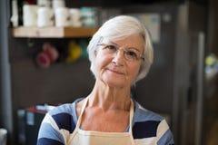 Femme aîné dans la cuisine Images libres de droits