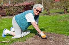 Femme aîné dans le jardin Photographie stock