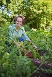 Femme aîné dans le jardin Photos libres de droits
