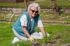 Femme aîné dans le jardin Photographie stock libre de droits