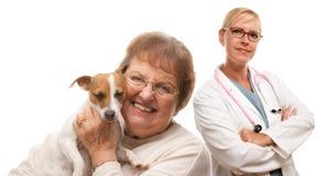 Femme aîné heureux avec le crabot et le vétérinaire Photographie stock libre de droits