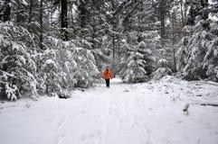 Femme aîné marchant dans une forêt neigeuse Images stock