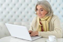 Femme aînée à l'aide de l'ordinateur Images libres de droits