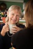 Femme aînée dans la cuisine avec le descendant ou l'ami Image libre de droits