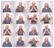 Femme aînée songeuse de sourire photos stock