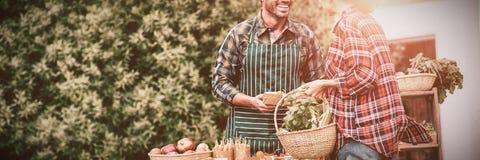 Femme achetant les légumes organiques de l'homme photo libre de droits