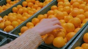 Femme achetant les mandarines fraîches à l'épicerie banque de vidéos