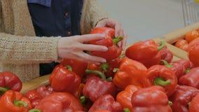 Femme achetant les paprikas rouges frais à l'épicerie banque de vidéos