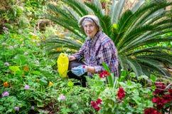 Femme adulte supérieure travaillant dans le jardin sur le fond décoratif de paume photos libres de droits