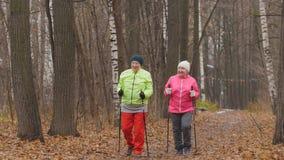 Femme agée deux heureuse en parc d'automne faisant l'échauffement avant la marche nordique Image stock