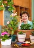Femme agée souriant à la maison faisant du jardinage Image stock