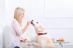 Femme agréable ayant l'amusement avec un chien Photos libres de droits