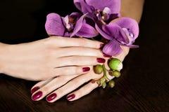 Femme appliquant le vernis d'ongle aux ongles de doigt Photo libre de droits