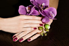 Femme appliquant le vernis d'ongle aux ongles de doigt Image stock