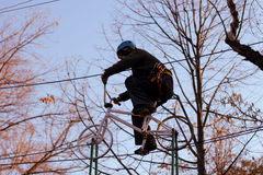 Femme appréciant l'activité en parc de corde photo libre de droits