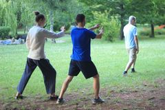 Femme apprenant Tai Chi Images stock
