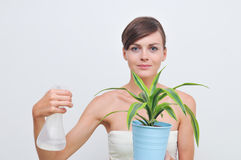 Femme arrosant la plante verte Photos libres de droits