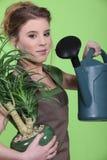 Femme arrosant une plante d'intérieur Photographie stock