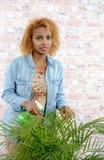 Femme arrosant une plante verte Images stock