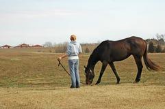 Femme assez jeune avec le cheval Images libres de droits