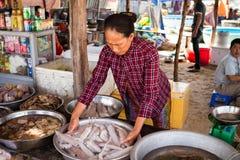 Femme assortissant des calmars à un marché de fruits de mer Photo libre de droits