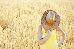 Femme attirant se cachant derrière son chapeau Image stock