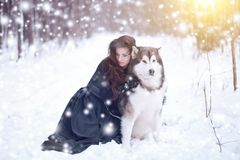 Femme attirante avec les chiens Fille de conte de fées avec les chiens de traîneau ou le Malamute Noël Photos stock