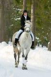 Femme au cheval image libre de droits