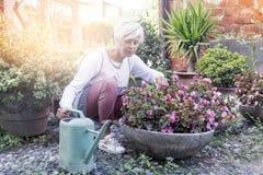 Femme au foyer attirante arrosant ses fleurs avec amour Photo libre de droits