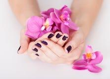 Femme avec admirablement des ongles manucurés photos libres de droits