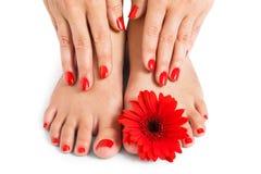 Femme avec de beaux ongles manucurés rouges photographie stock