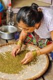 Femme avec des bracelets au Népal Images stock