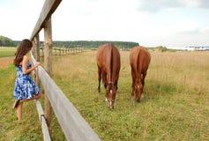 femme avec des chevaux Photo stock