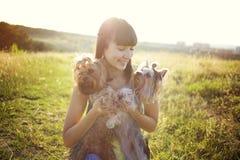 Femme avec des chiens Photos stock