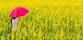 Femme avec des fleurs Photos libres de droits