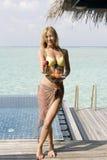 Femme avec des fruits Photos stock