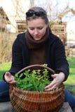 Femme avec des herbes images libres de droits