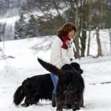 Femme avec deux grands eau-chiens dans la neige Photo stock