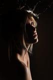 Femme avec du bois argenté Photo libre de droits