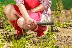 Femme avec l'outil de jardinage fonctionnant dans le jardin Photographie stock libre de droits