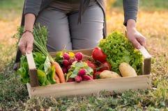 Femme avec la caisse végétale image stock