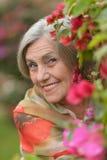 Femme avec la fleur rouge Photographie stock libre de droits