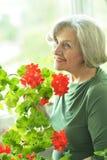 Femme avec la fleur rouge Images stock