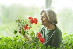 Femme avec la fleur rouge Images libres de droits
