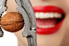Femme avec le casse-noix Image libre de droits