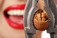 Femme avec le casse-noix Photo stock