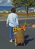 Femme avec le chariot de panier avec des fleurs Images stock