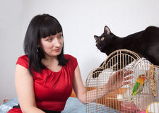Femme avec le chat et le perroquet Photo stock