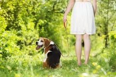 Femme avec le chien Image stock