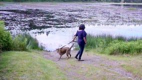 Femme avec le chien par un lac clips vidéos